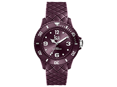 Montre Ice-Watch 007276