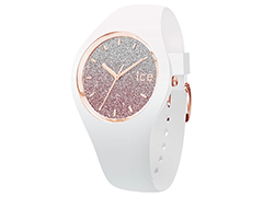 Montre Ice-Watch 013427