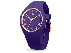 Montre Ice-Watch 015695