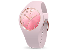 Montre Ice-Watch 015742