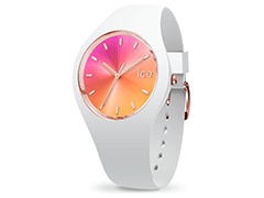 Montre Ice-Watch 015750