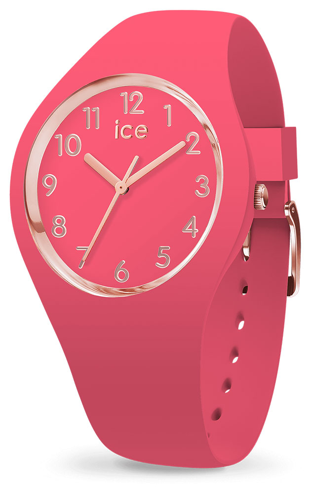 Montre Ice-Watch 015331