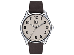 Montre Ice-Watch 013045