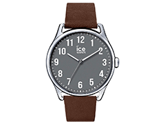 Montre Ice-Watch 013049